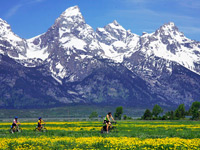 Biking in Grand Teton National Park Vacations
